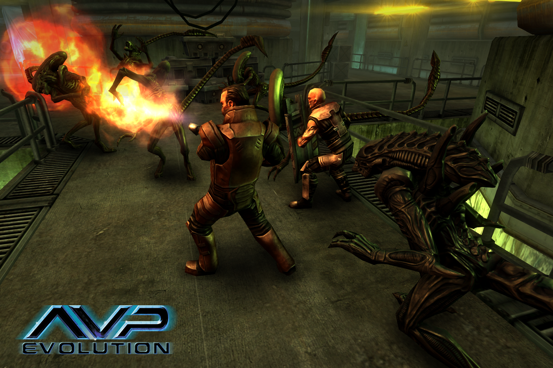 AVP - Evolution - 3