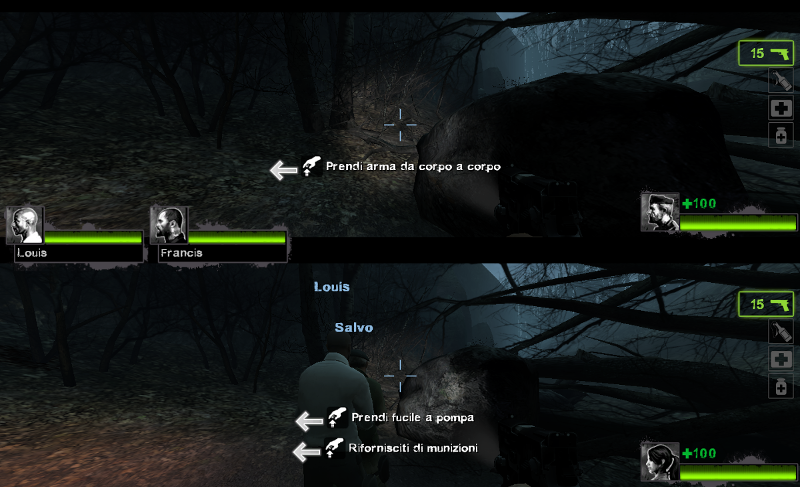 Left4Dead 2 splitscreen PC
